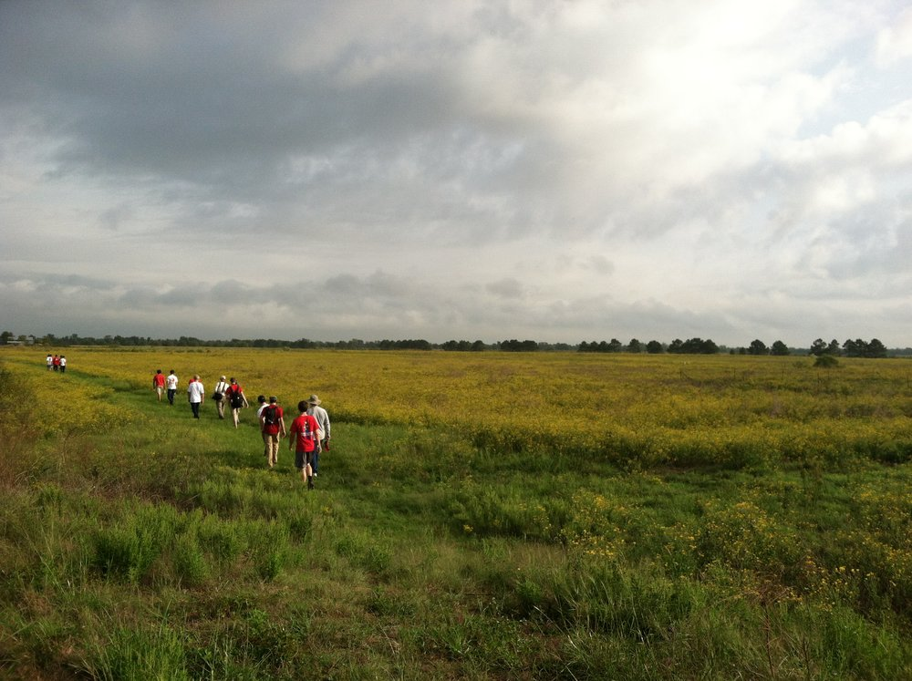 Students explore the Katy Prairie Conservancy's Indiangrass Preserve