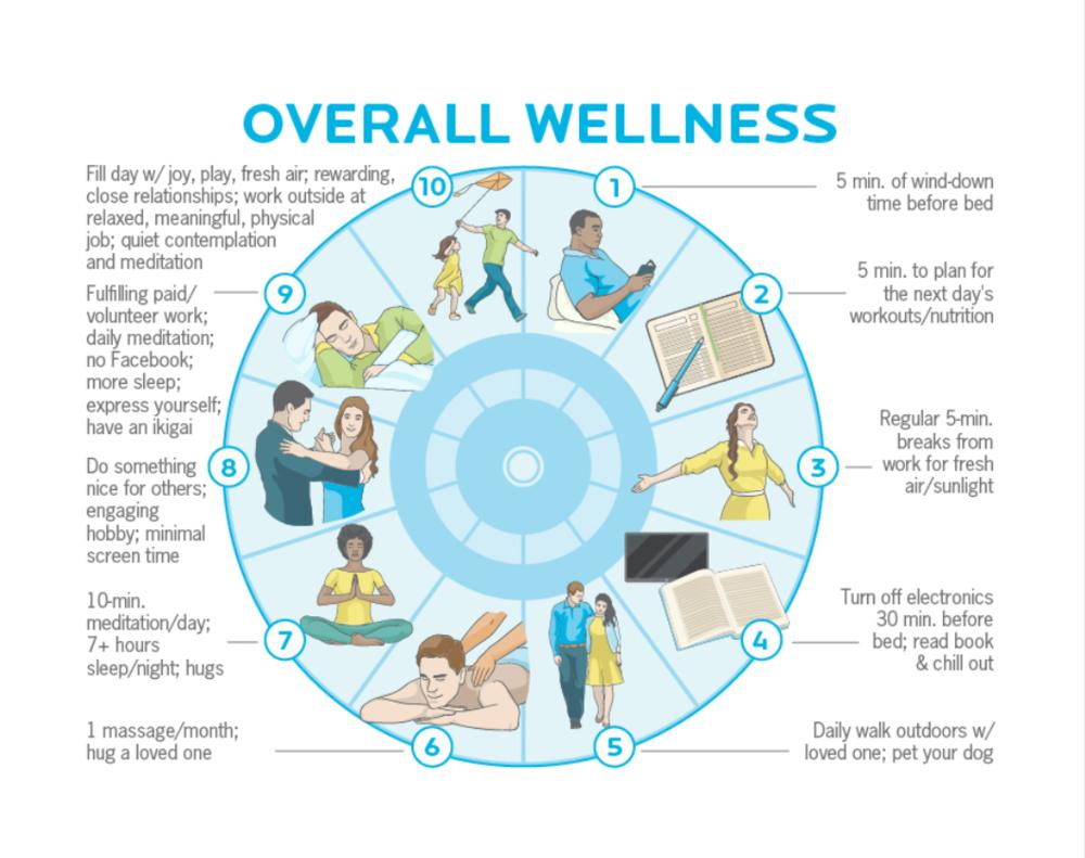 Wellness Dial (PN).png