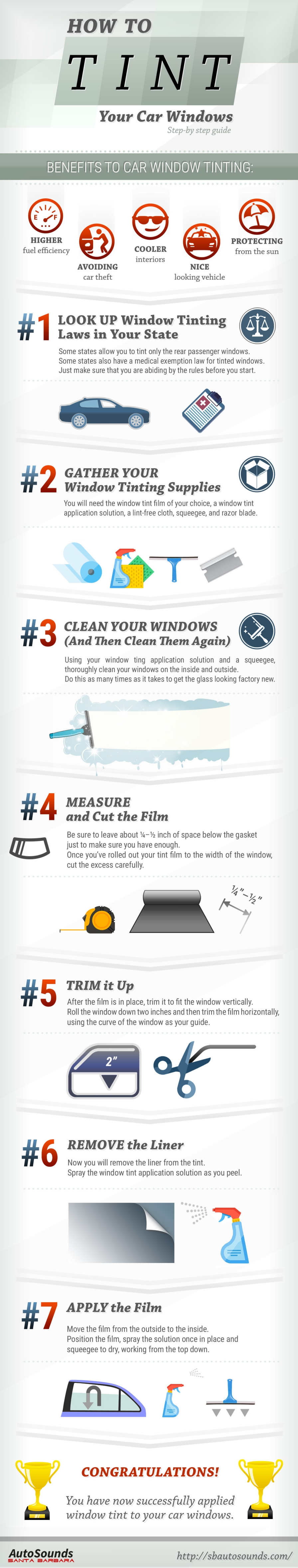How To Tint Your Windows Infographic