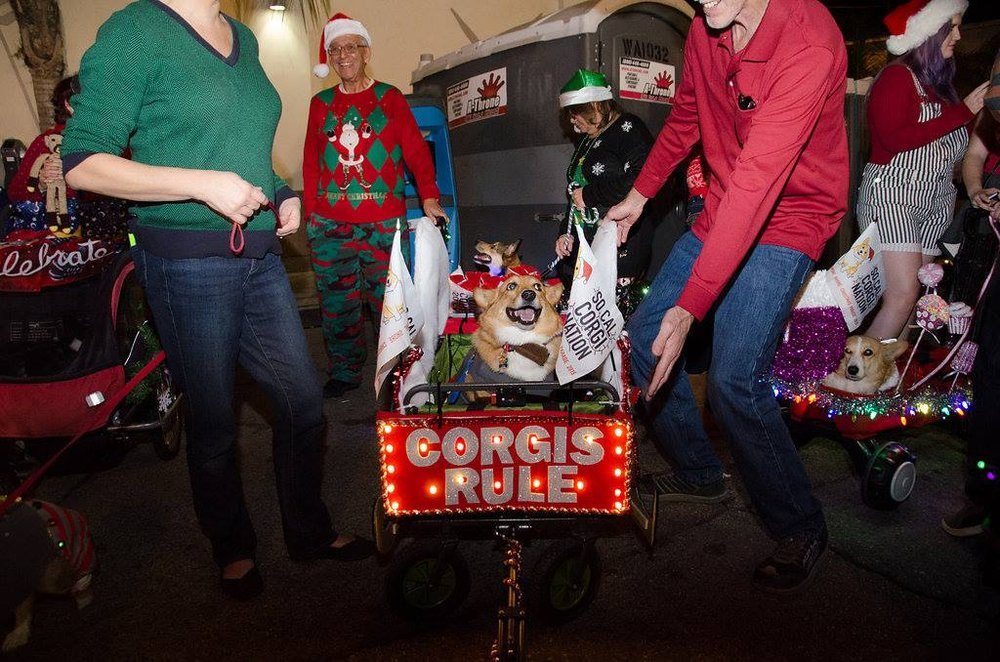 2017 so cal corgi nation christmas parade and party so cal corgi nation