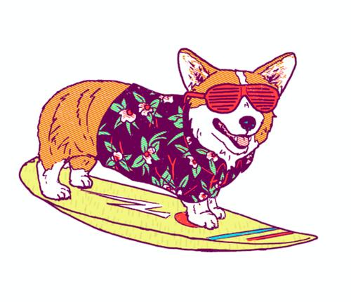 soul surfer dog