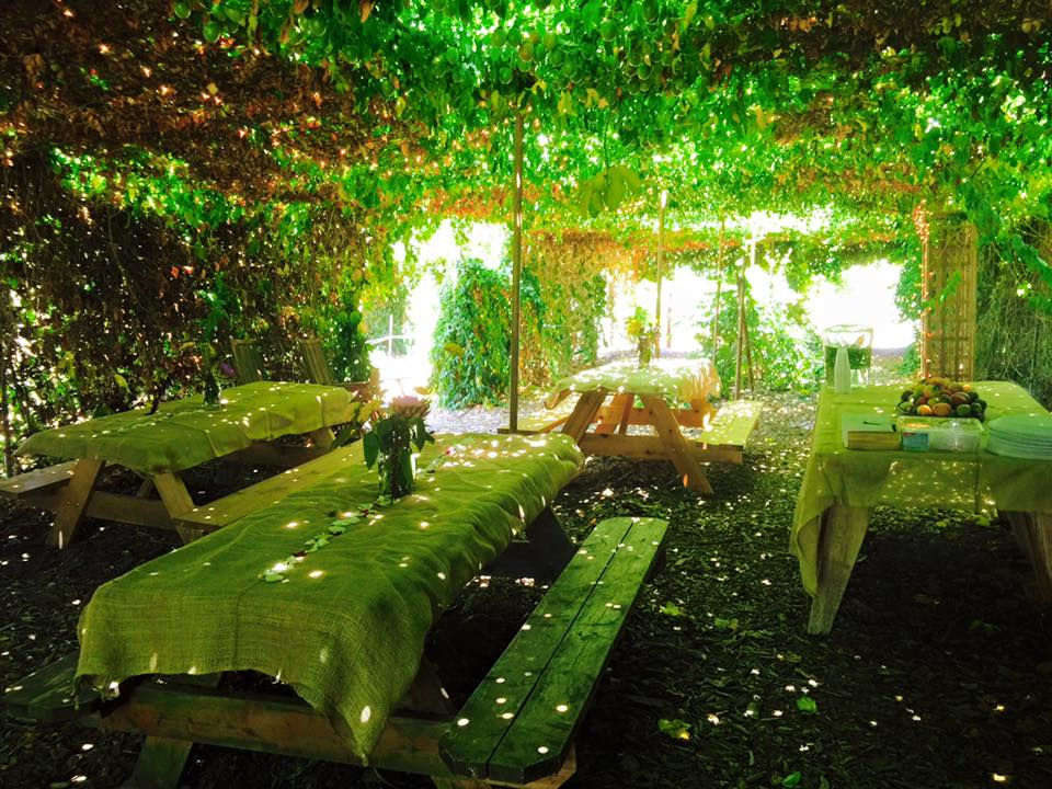 Nice A Private Party Under The Canopy Of Passion Fruit.