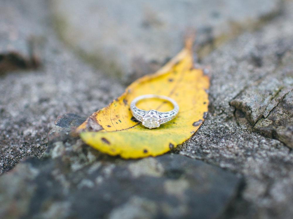 Greensboro Engagement Photographer-6.jpg
