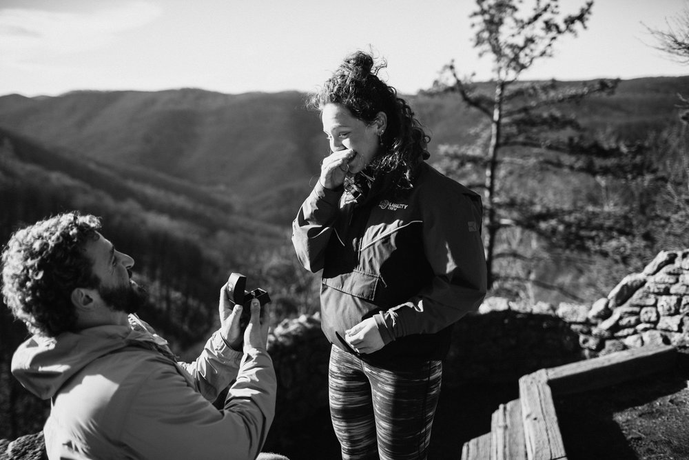 Surprise mountain top proposal