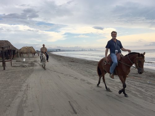 Beach Horseback Riding Excursion - This unique opportunity offers travelers a chance to ride a