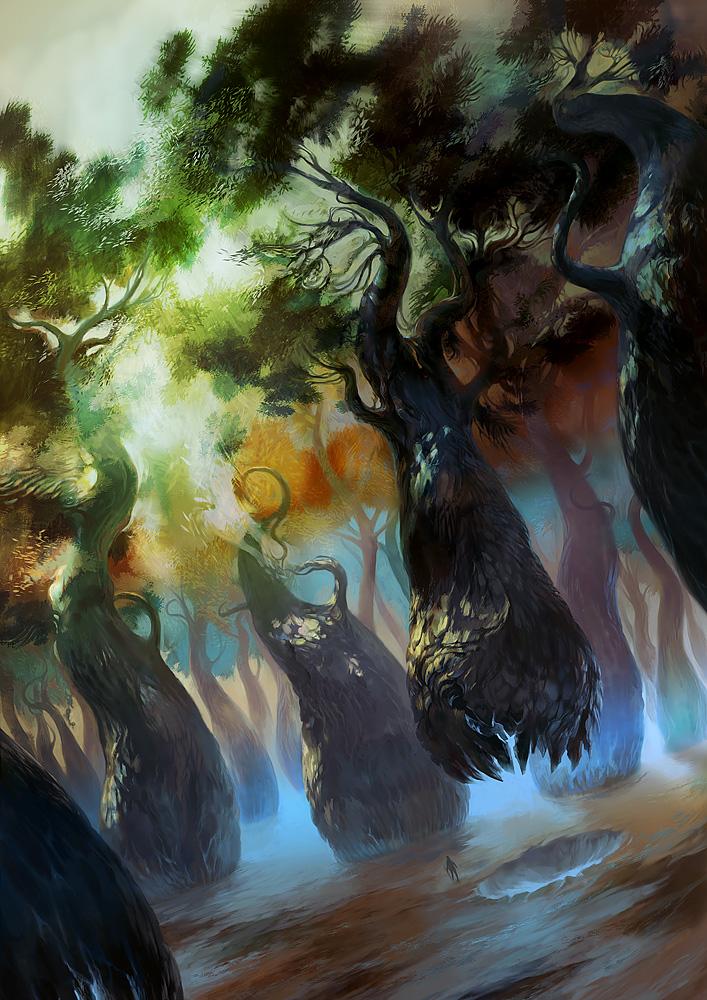 05_vmeignaud_forest.jpg