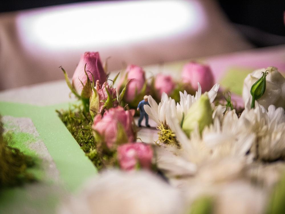 180427_expo_fleurs_126.jpg
