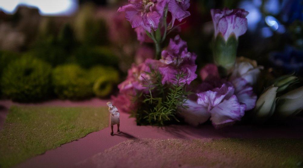 180427_expo_fleurs_123.jpg