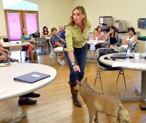 COYOTE OBSERVER TRAINING: Mary Ann Bonnell leads a volunteer training Thursday night at the Broomfield Community Center. Volunteers will observe coyotes as part of the Denver Metro Area Coyote Behavior Study, which is a long-term study of coyote-human interaction in the area. ( David R. Jennings )