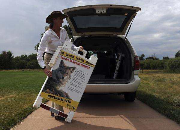 Aurora Senior Natural Resources Specialist Mary Ann Bonnell retrieved a sign Friday afternoon warning of coyote activity in Horseshoe Park. (Karl Gehring, The Denver Post)