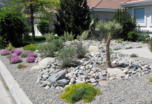 carson-city-nevada-landscape-contractor