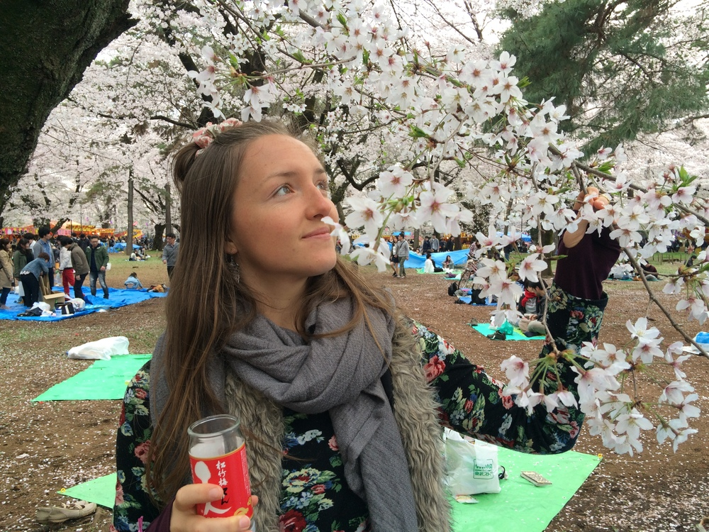 Celebrating the Sakura trees blossoming in their full beauty! ..with a little dose of sweet sake ;-)