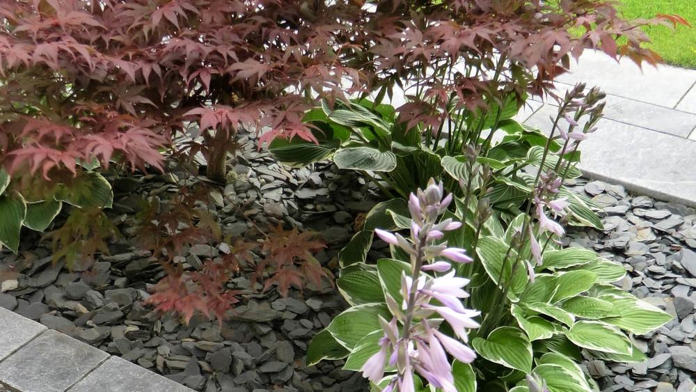 GardenDesignCheshire (39).jpg