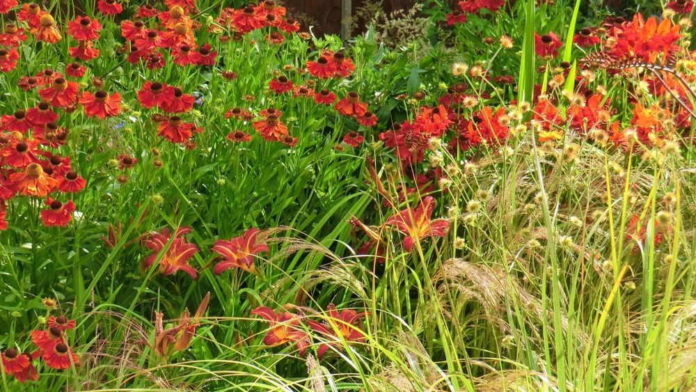GardenDesignCheshire (41).jpg