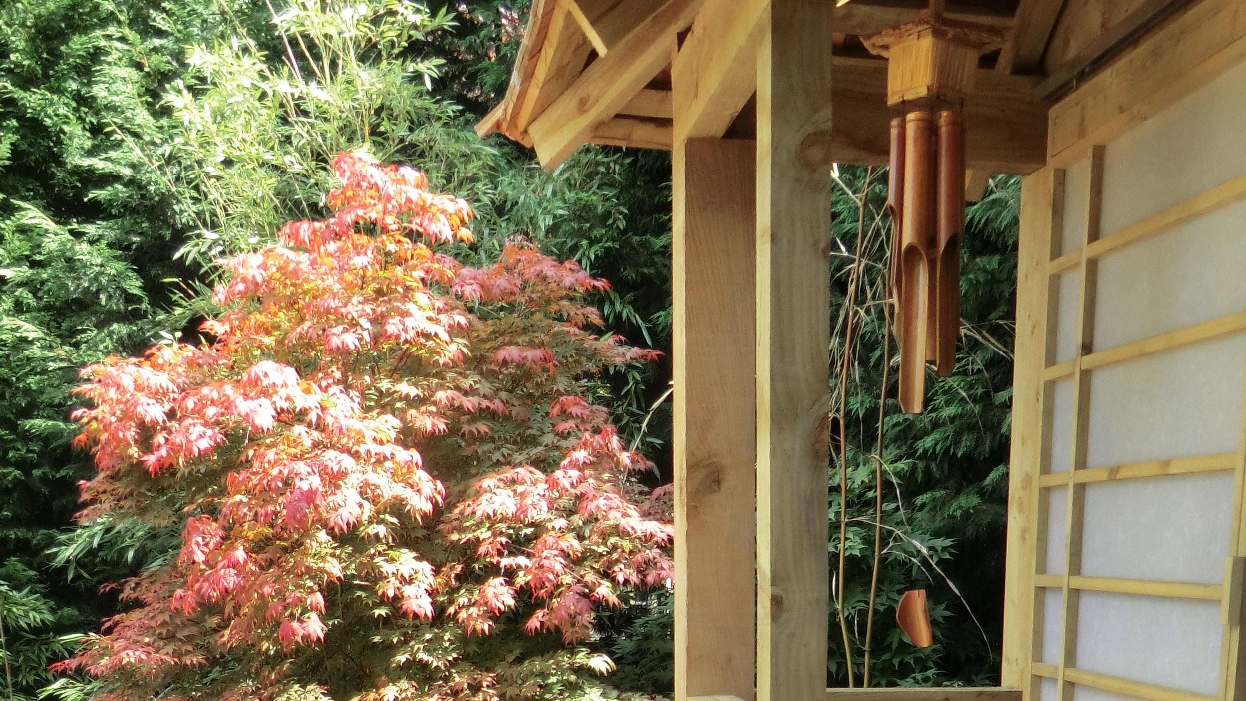 Walls and Perennials — Kirman Design