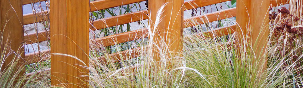 Cedar Screens & Grasses