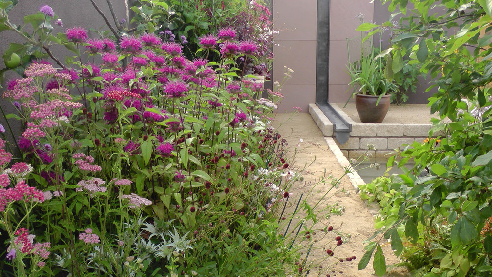 Cheshire Garden Design: RHS Tatton Flower Show 'Precious Resources Garden': Rill, path and perennial raised beds