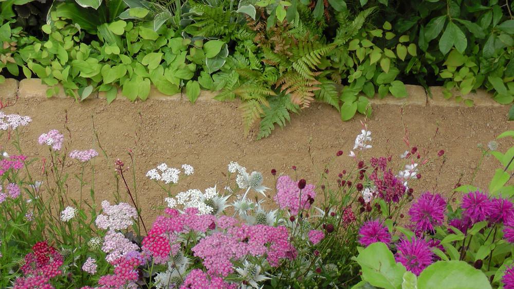 Cheshire Garden Design: RHS Tatton Flower Show 'Precious Resources Garden': Path with perennial borders