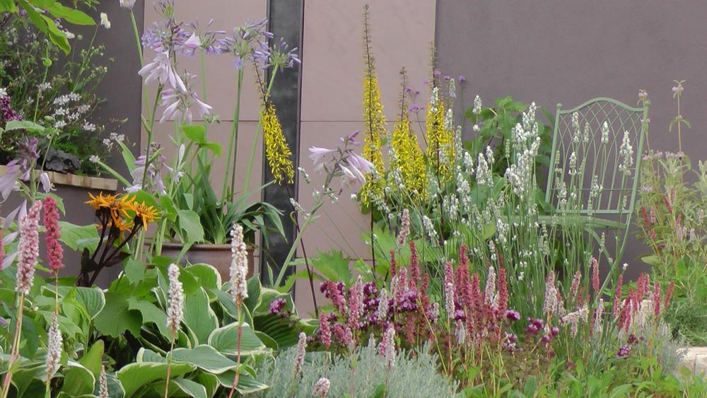 Cheshire Garden Design: RHS Tatton Flower Show 'Precious Resources Garden': Rill and perennial planting