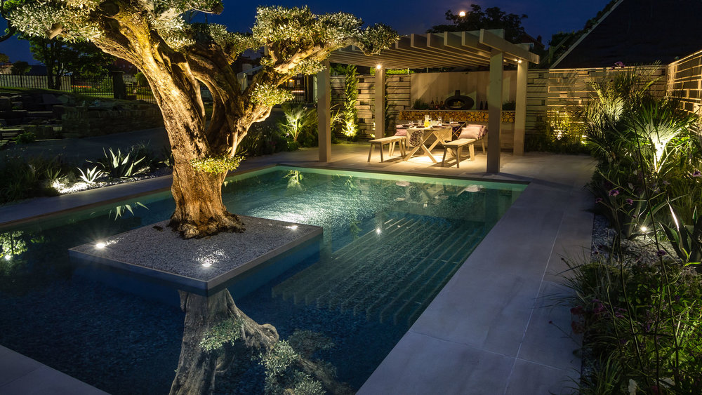 Southport Garden Design: A View Of The Olive Tree By Night