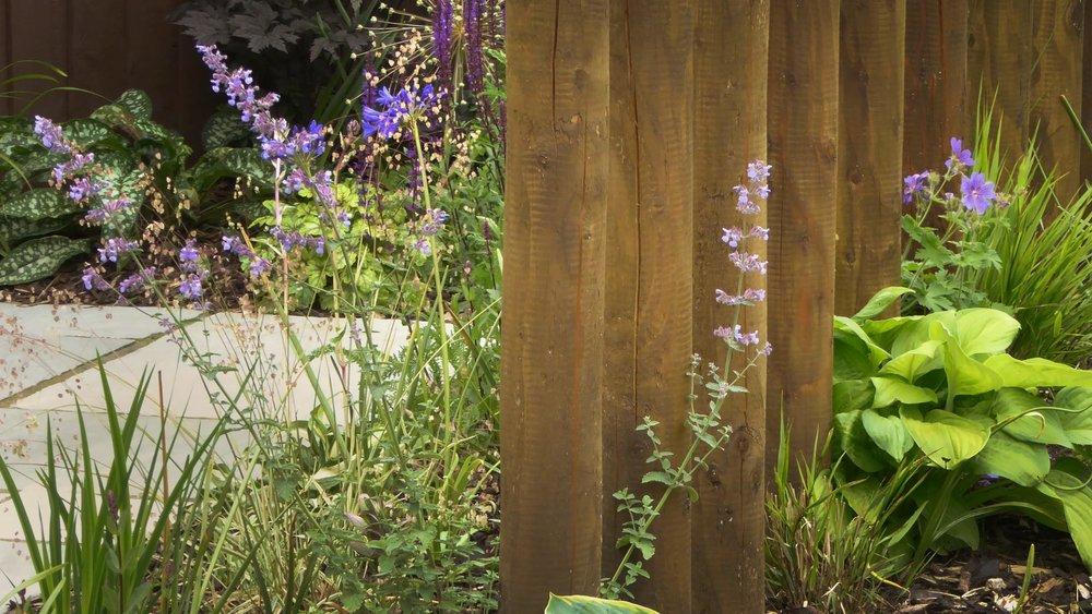 gardendesignbillinge (13).jpg