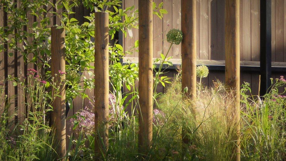 gardendesignbillinge (23).jpg