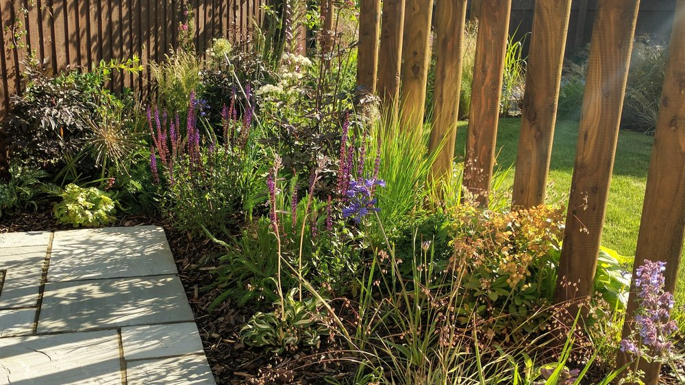 gardendesignbillinge (26).jpg