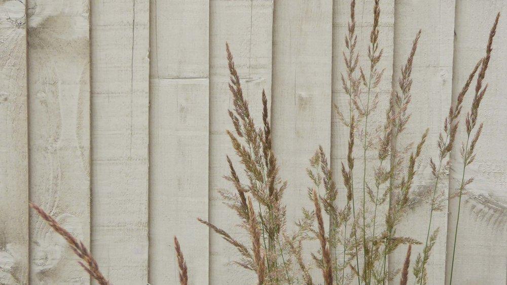 GardenDesignLancaster 18.jpg