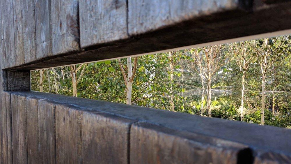 Southport Garden Design: Kuro: View Through The Slot In The Cube
