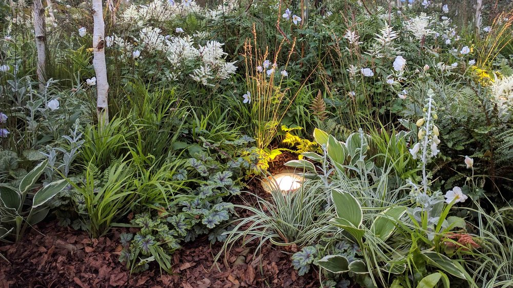 Southport Garden Design: Kuro: Inside Mirrored Woodland Cube