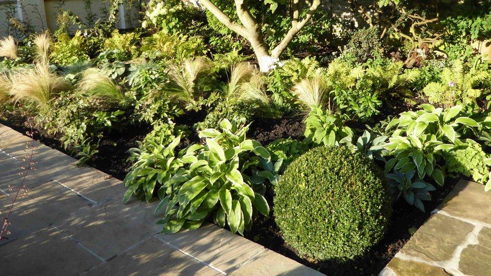 Cheshire Garden Design: The Sun and Shade Garden: Shade planting area