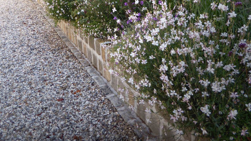 Cheshire Garden Design: The Sun And Shade Garden: Drive And Gaura In Raised Bed