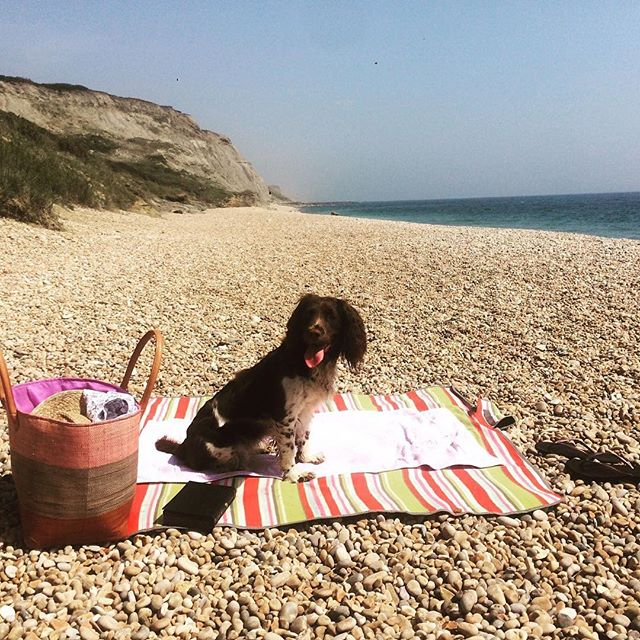Lazy days #littleboutiqueclub #beachlife #jurrasiccoast