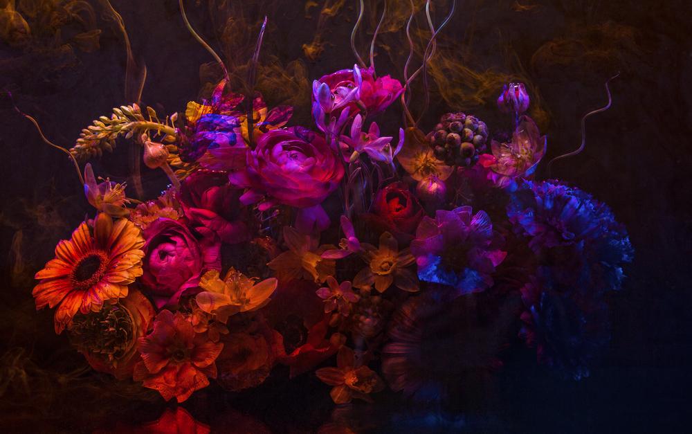 0014_Deborah_Roffel_Flower Still Life-febr2014-2440.jpg