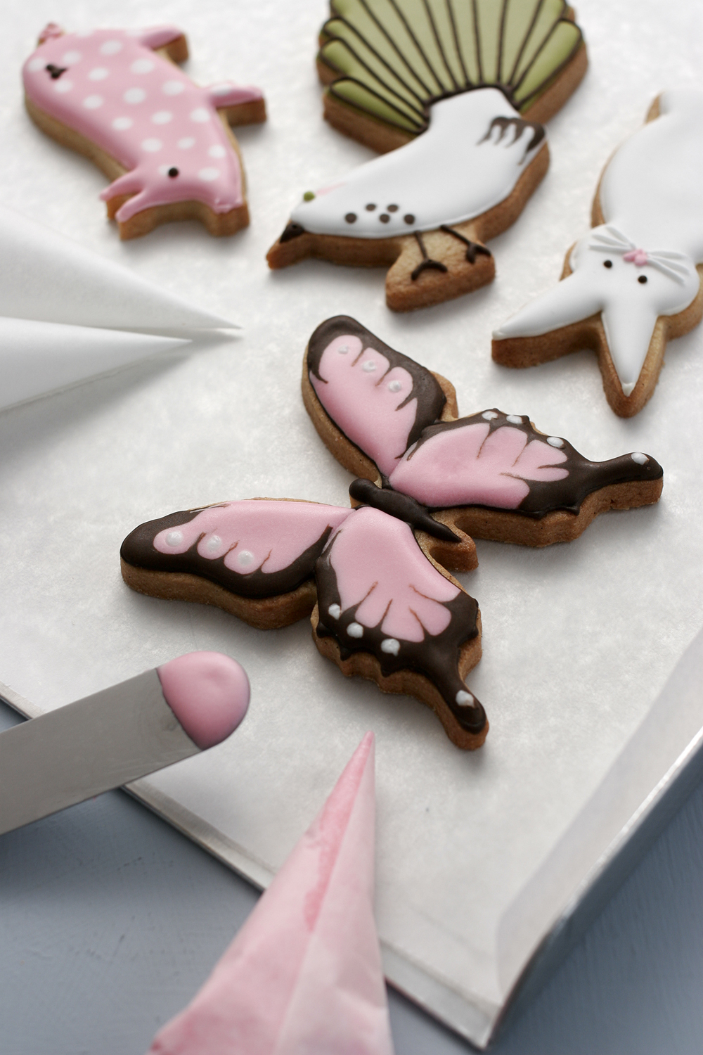 animal-icing-workshop.jpg