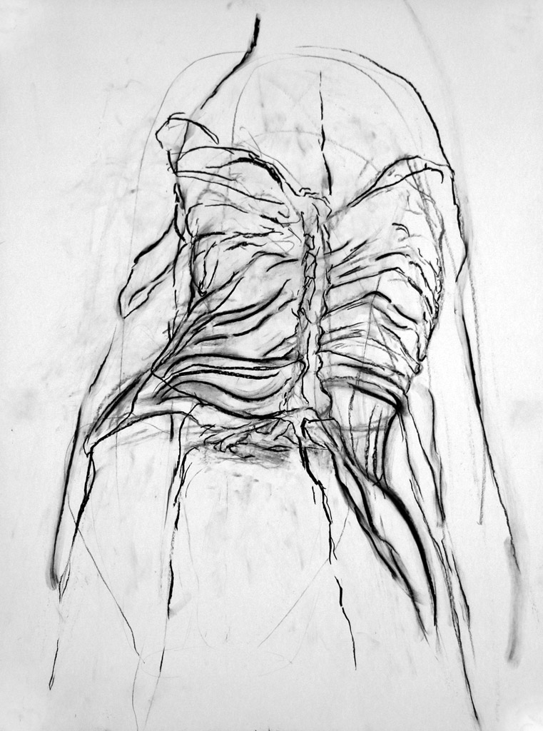 Respiration, 2015, Charcoal on paper, 24 x 18 in.