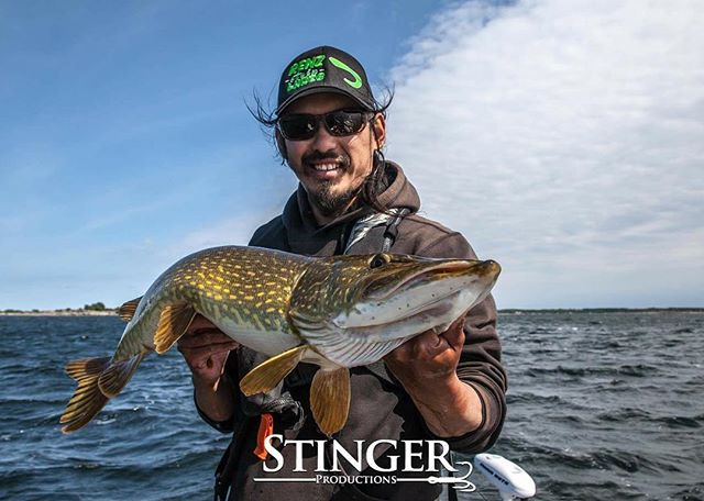 @Philip_truong_photo from @stingerproductions with a massive #pike 💪🏼