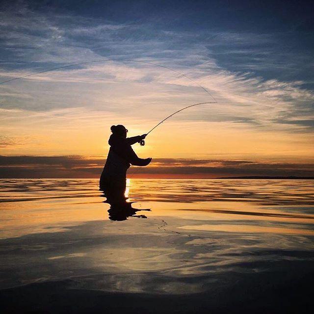 Sunset vibes 🌅  _________________________________________ 📸 @z_sattermann