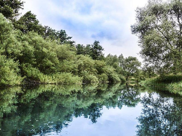Summerdreams 🙏🙏 #weareozolot #ozolot #fishinglife 📷 @leehald