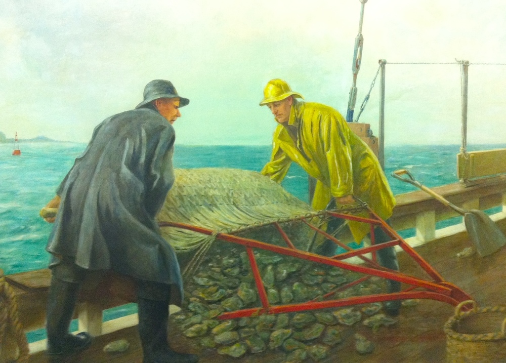 In this scene painted by WPA-artist Alexander Rummler, traditional oystermen dump a load of oysters on deck using a roller-dredge, the precursor to today's boom-dredge. This original painting, and many other oyster-related scenes, are on display in the Norwalk City Hall.