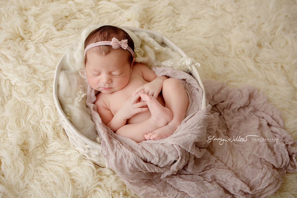 Newborn photography croydon south melbourne bow cream pink vintage baby girl sleepy willow jpg