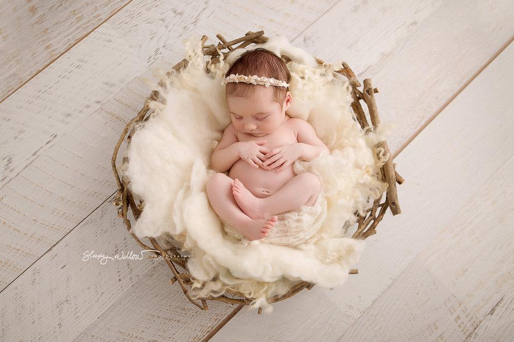 Sleepy willow newborn photography baby cream nest pretty girl love fluff melbourne mobile croydon jpg
