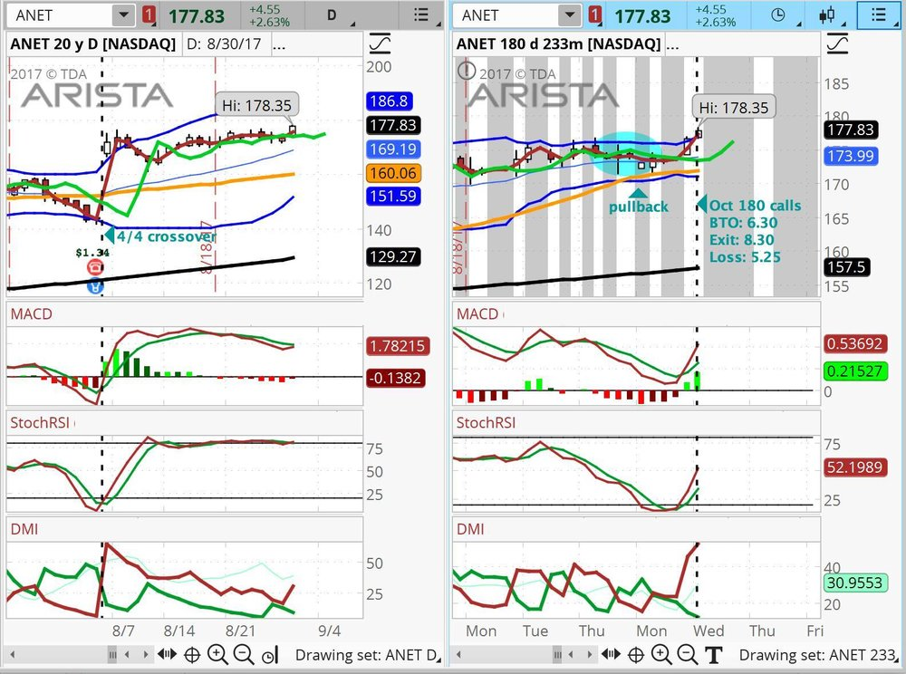 ANET Arista stock chart Tela Holcomb.jpg
