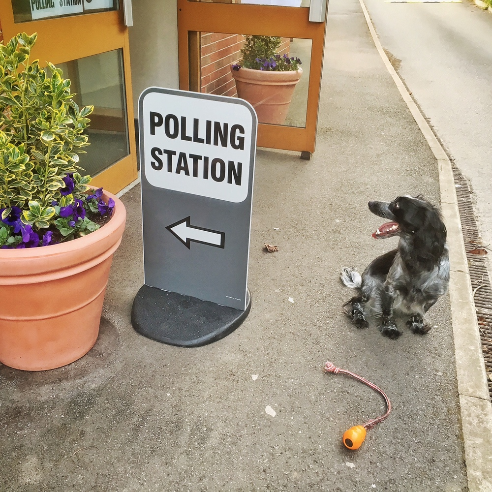 Voting at Little Eaton Village