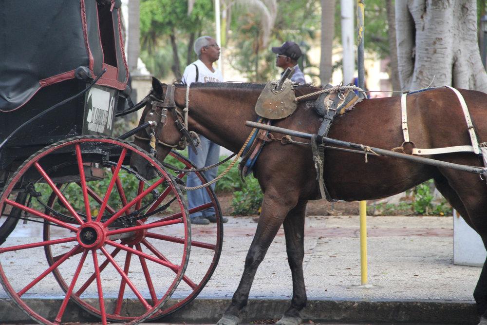 Cuba 24.jpg