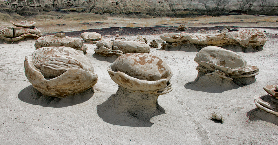 Alien Hatchery, Bisti de-na-zin Wilderness Area, San Juan County New Mexico
