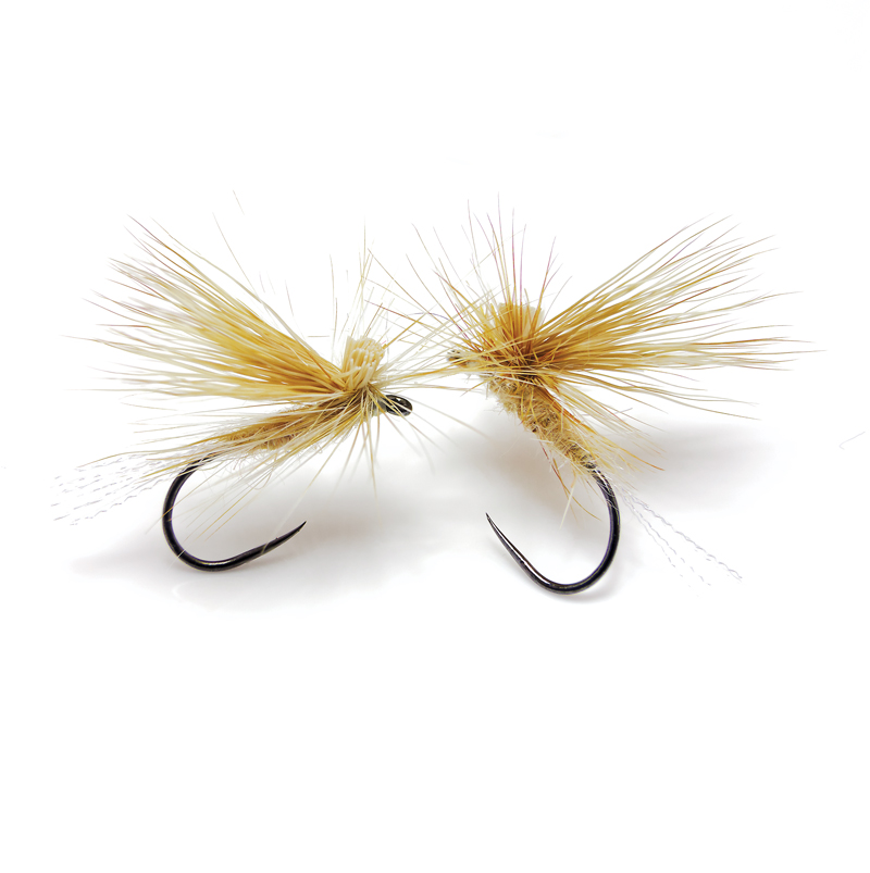 Ginger variant EC Caddis doubles for cranefly and newly emerged PMD mayfly duns.