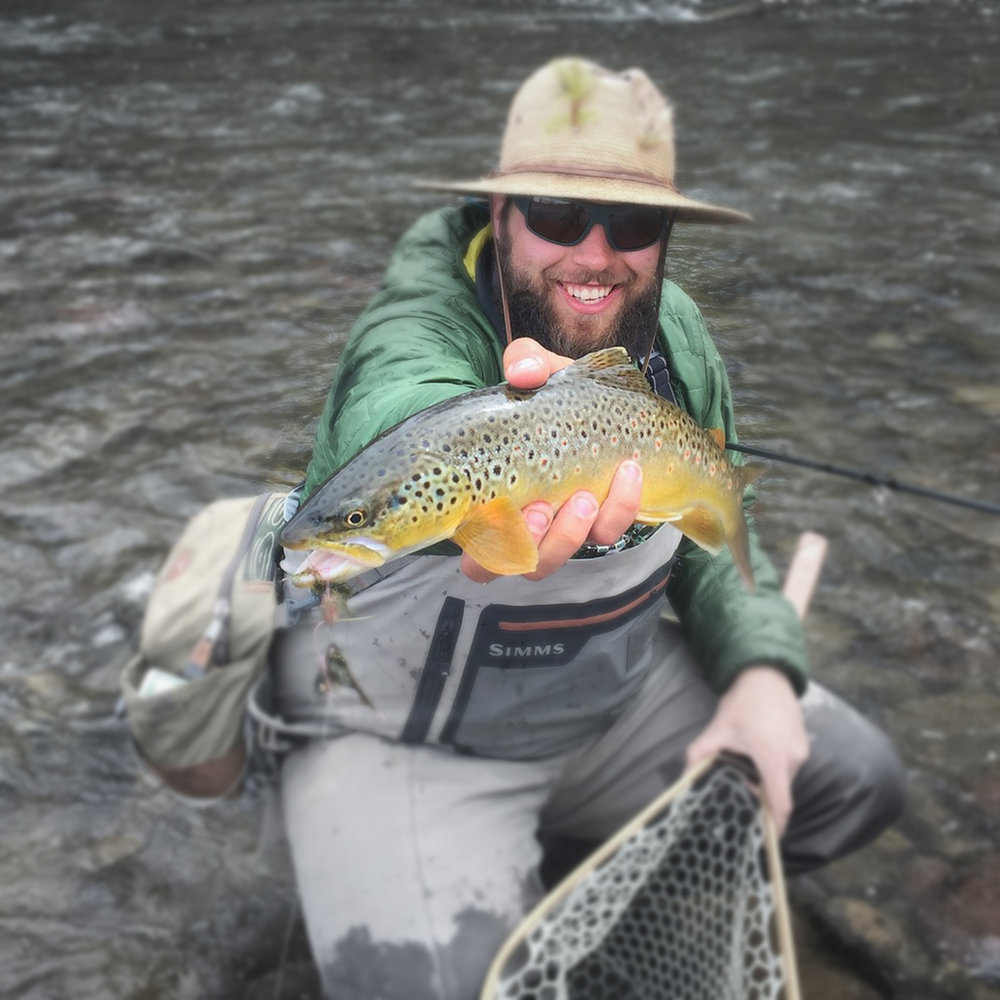 A streamer hooked brown