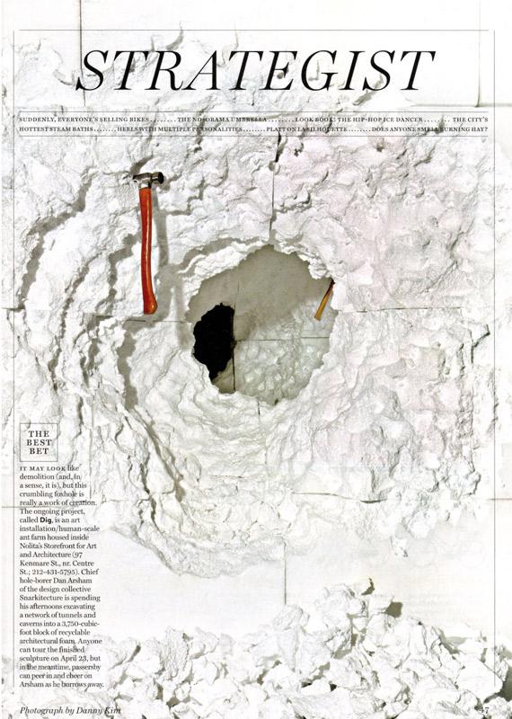 new-york-magazine-strategist-2011-04-18.jpg