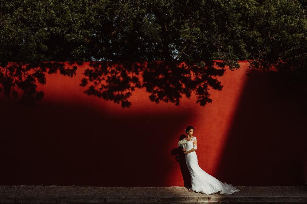 Casamento na Estufa real na ajuda, em Lisboa